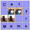 Memoria de gato